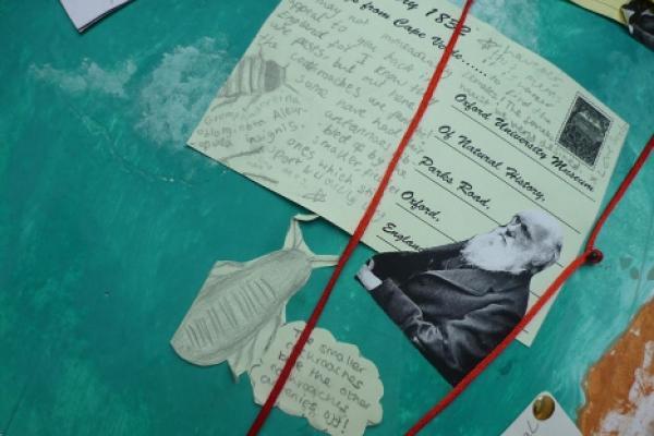 Renaissance Globe Project: MNH postcard from Darwin 2