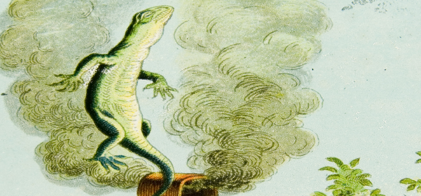 06 Alice Lantern Slides Bill the Lizard 1800x840px